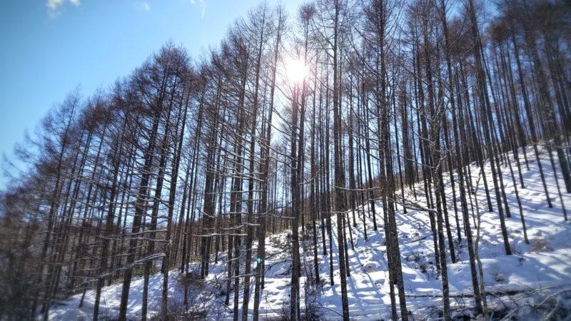 プロセス氷上走行会 2020年2月13日(木)募集開始!